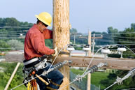 Electrical Worker Image